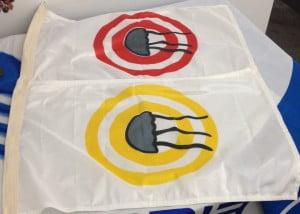 Bandeiras-cnidários